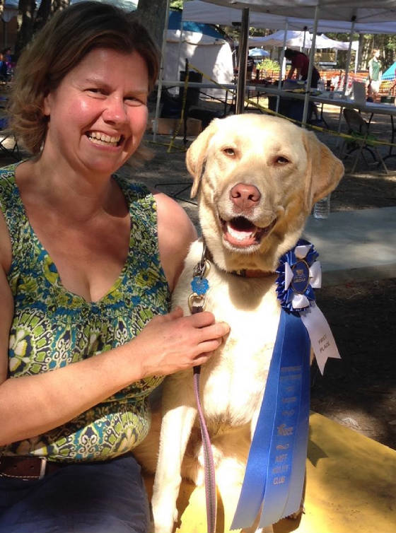 Yellow Labrador with handler getting a ribbon