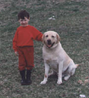 Labrador Retriever with his little boy