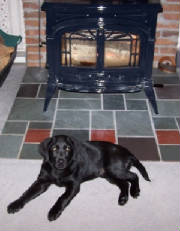 Labrador Retriever puppy laying by the wood stove