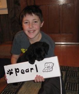 Boy and Black Labrador puppy with a sign