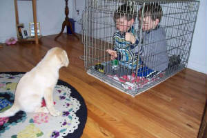Puppy looking at children who are in his crate
